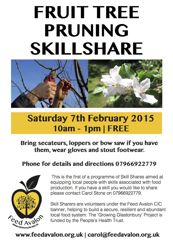 Pruning Skillshare