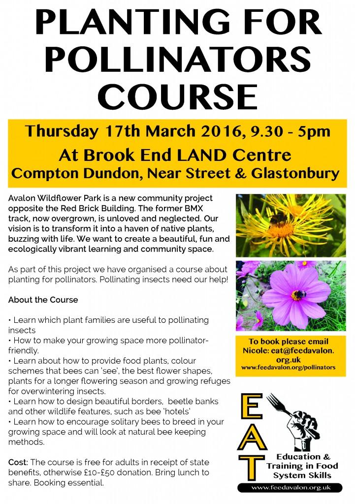 Pollinators Course 17th March