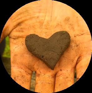 soilheart1